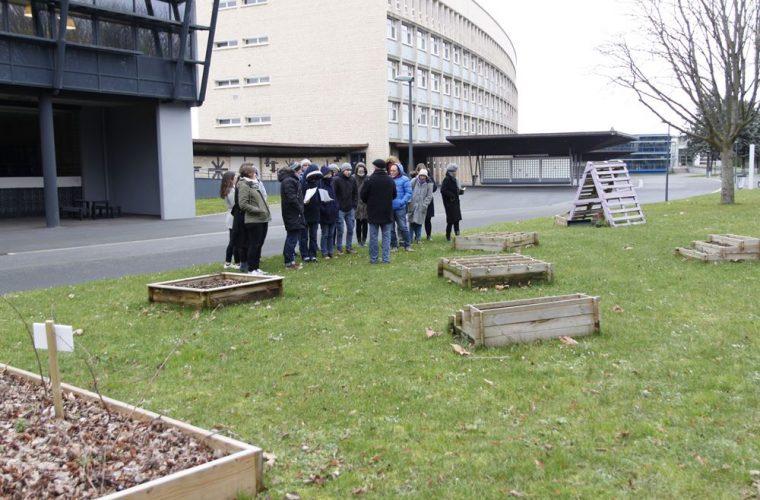 le graine normandie - Pour des lycées plus verts : ils se sont formés au label E3D