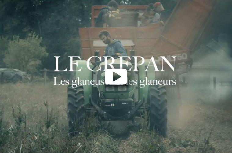 le graine normandie - Le CREPAN sensibilise au gaspillage alimentaire grâce au glanage