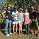 le graine normandie - Une oasis près de Coutances : 1001 feuilles